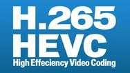 Germany DVB-T2 H.265 HEVC Codec New Model DVB-T265 auto mobile digital car dvb-t2 tv receiver 17
