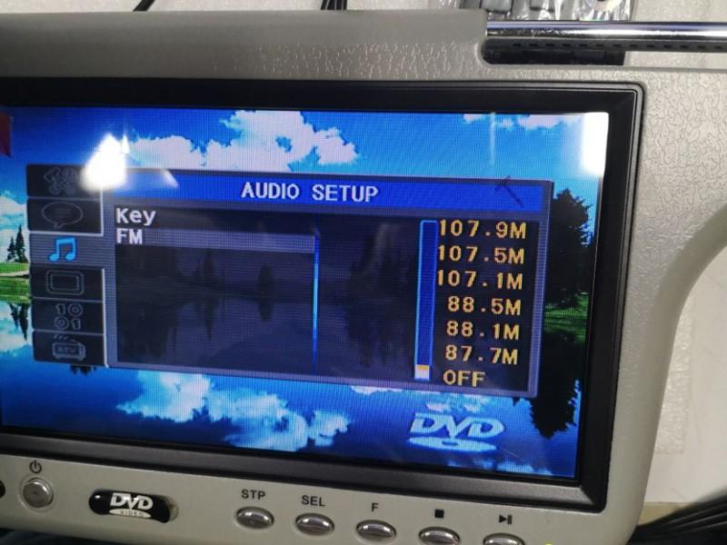 fm frequency sun visor dvd player